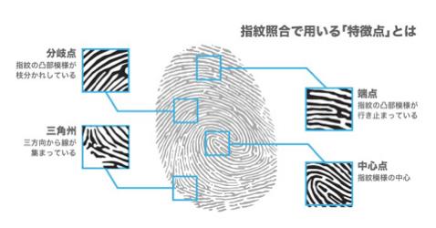 指紋認証の仕組み