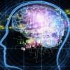 なんで当たるの?脳内メーカーの仕組みを解説します!